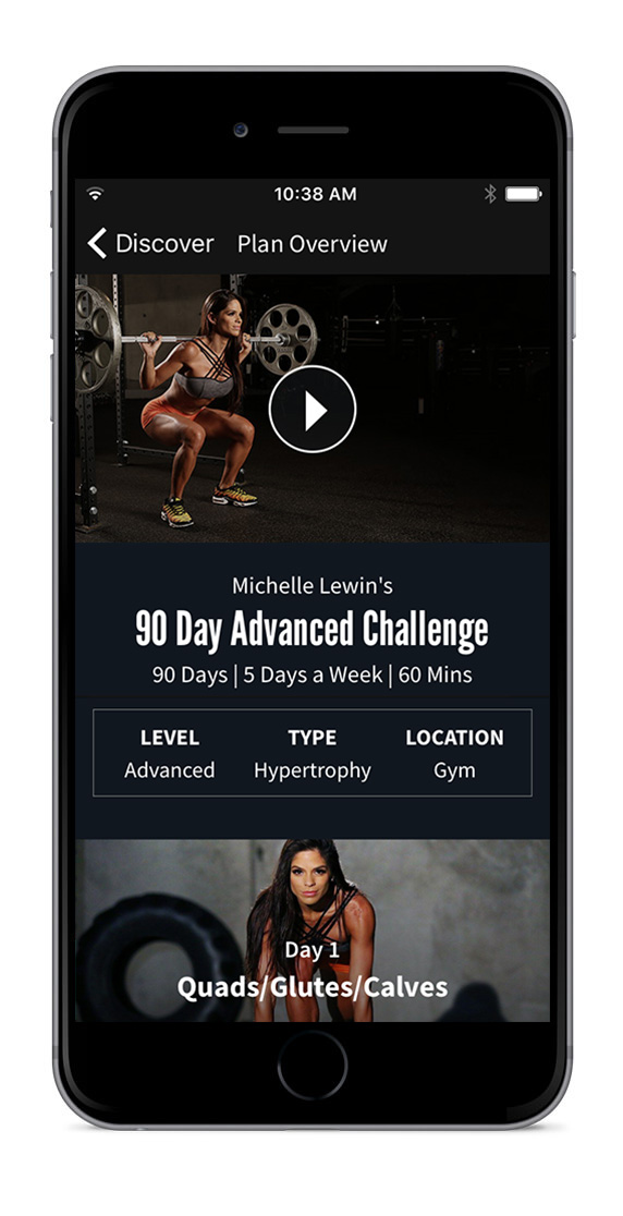 Eng Plan 90 Day Advanced Challenge Michelle Lewin